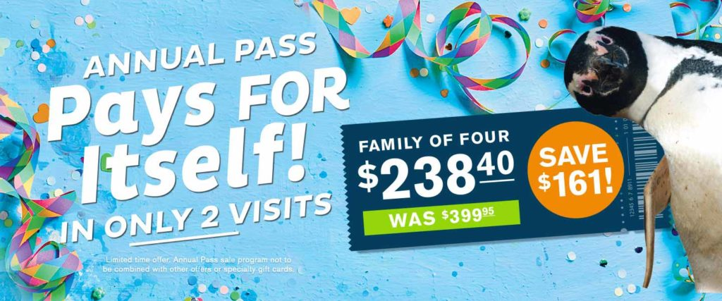 Annual Pass Special