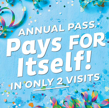 Annual Pass Savings