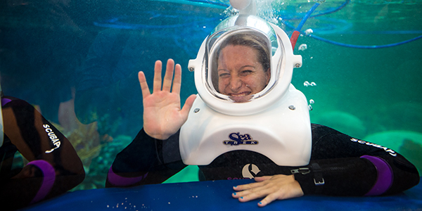 Wednesday, September 7, 2016. Opening photography for OdySea Aquarium.
