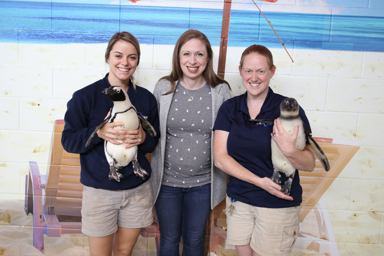 Chelsea Clinton with Penguins at OdySea Aquarium