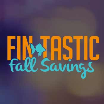 FinTastic Fall
