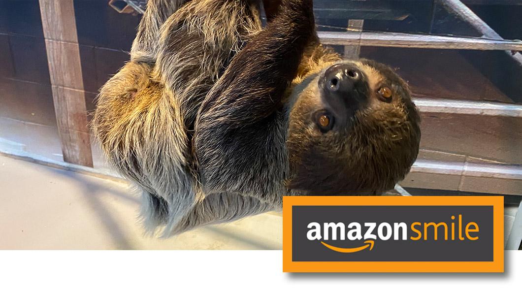 OA-AmazonSmile