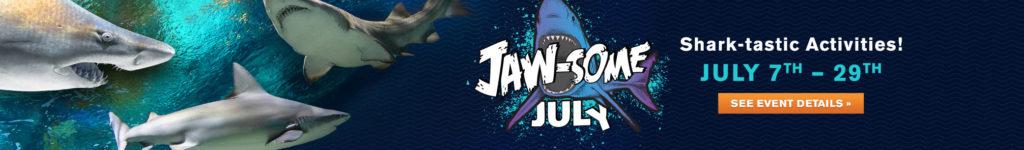 OA-Jaw-someJuly-HPSlider-2084x350
