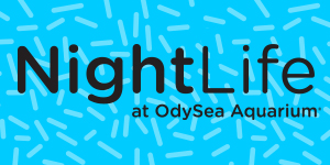 OA-NightLife-Mar21-PromoNav