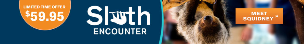 OA-SlothEncounter-HPSlider-2084x305