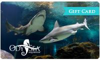 OA-holidaylandingpage-giftcard