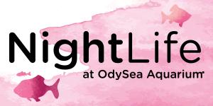 OA_NightLife-PromoNav-FishNSips-11-15