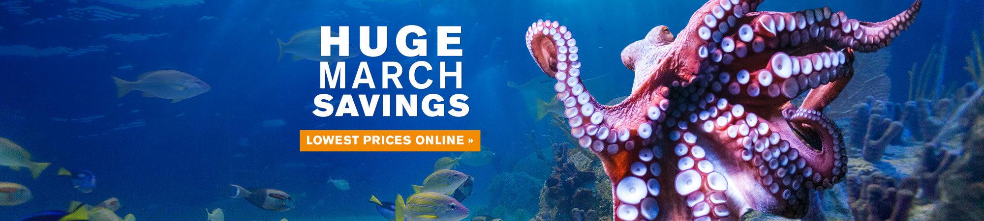 OA_Web-MarchPromo-homepageSlider