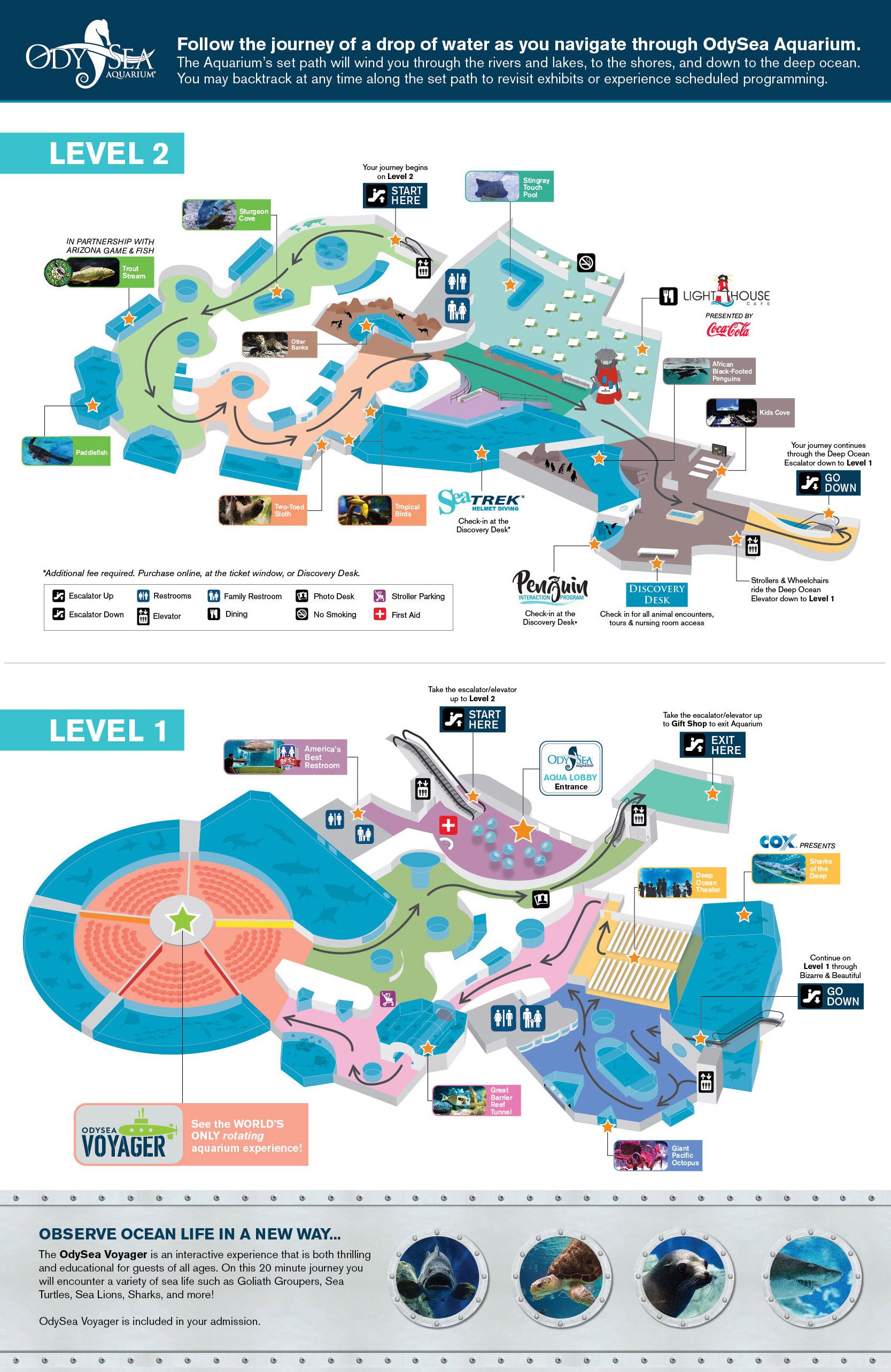 Arizona Floor Plans Hours And Visit Info For Odysea Aquarium