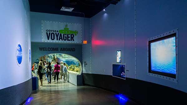 OdySea-Voyager-1