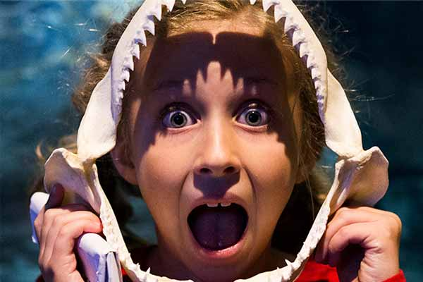 Kid with shark skull
