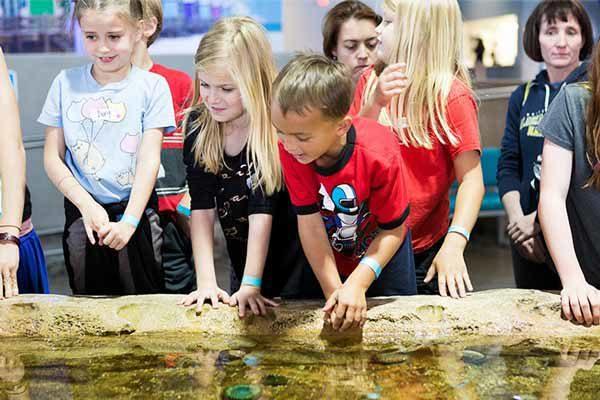 Kids at tidal pool