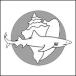Shark Shell Logo