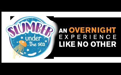 Slumber Under The Sea