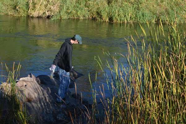 Salt River Clean Up Shoreline